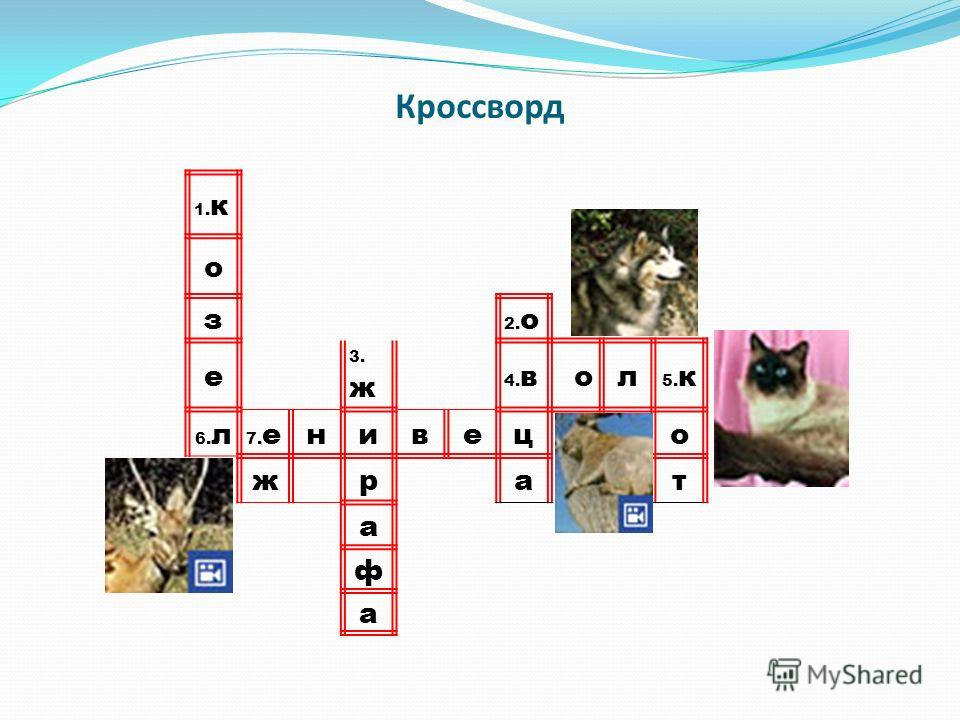 Кроссворд 1. к о з 2. о е 3. ж 4. вол 5. к 6. л 7. енивецо жрат а ф а