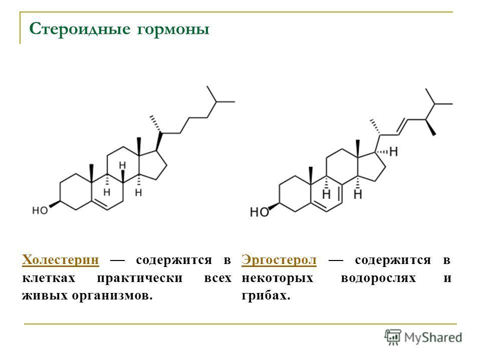 Стероидные гормоны ХолестеринХолестерин содержится в клетках практически всех живых организмов. ЭргостеролЭргостерол содержится в некоторых водорослях и грибах.
