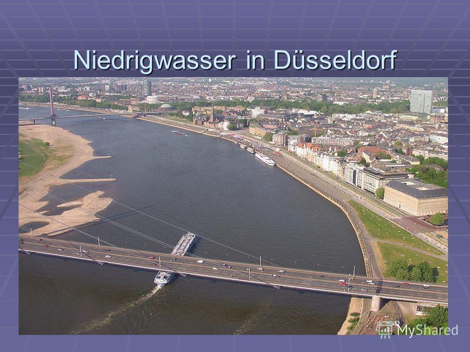 Niedrigwasser in Düsseldorf Niedrigwasser in Düsseldorf