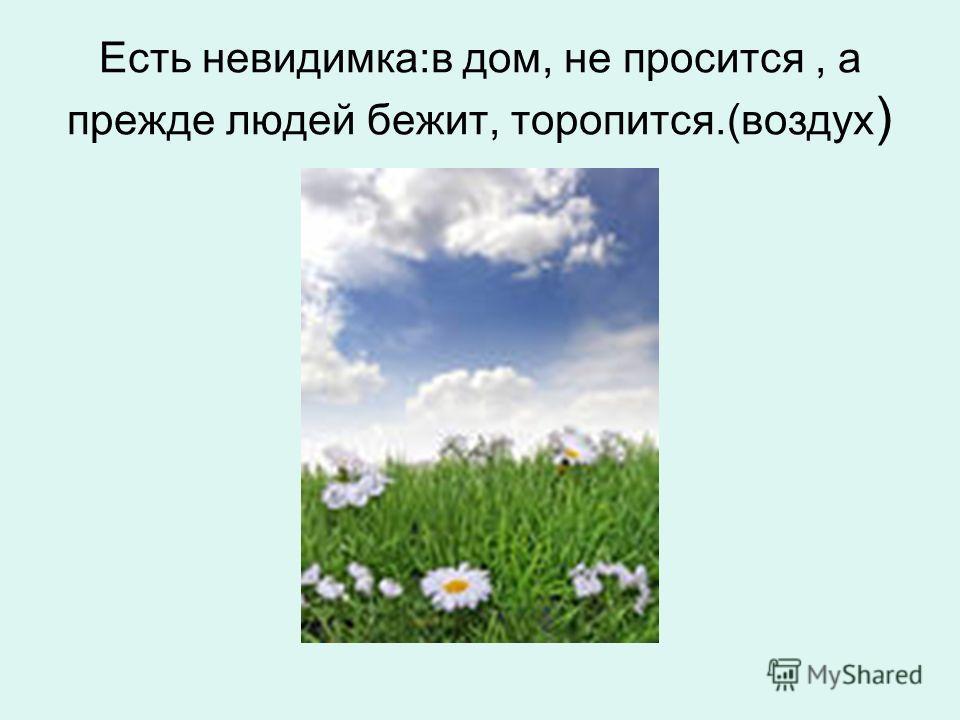 Есть невидимка:в дом, не просится, а прежде людей бежит, торопится.(воздух )