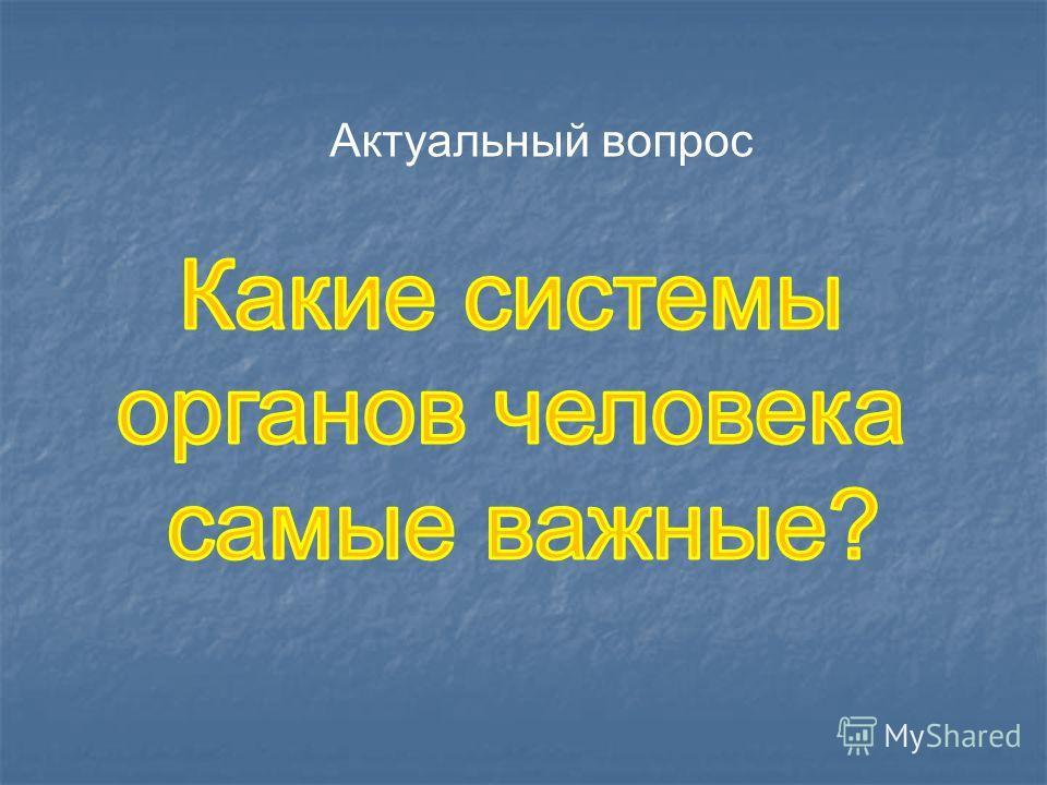 Актуальный вопрос