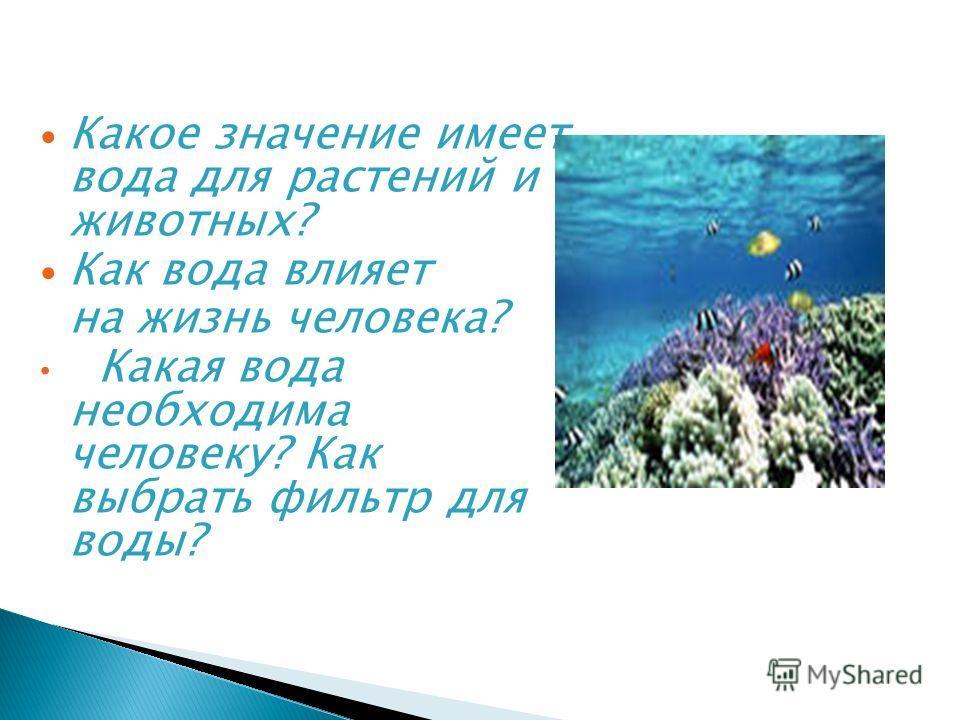 Какое значение имеет вода для растений и животных? Как вода влияет на жизнь человека? Какая вода необходима человеку? Как выбрать фильтр для воды?