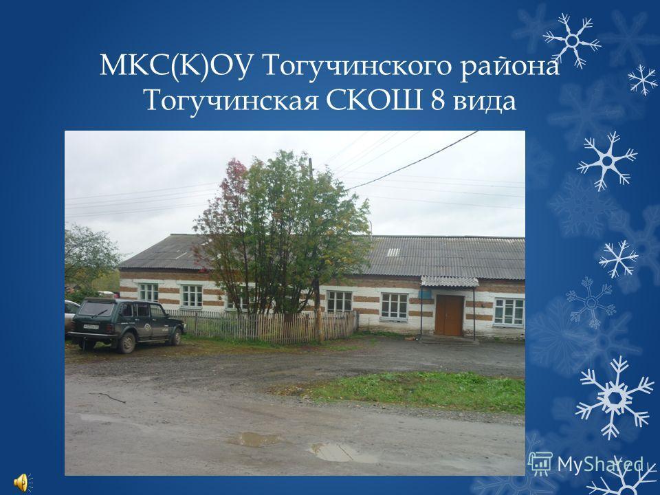 МКС(К)ОУ Тогучинского района Тогучинская СКОШ 8 вида