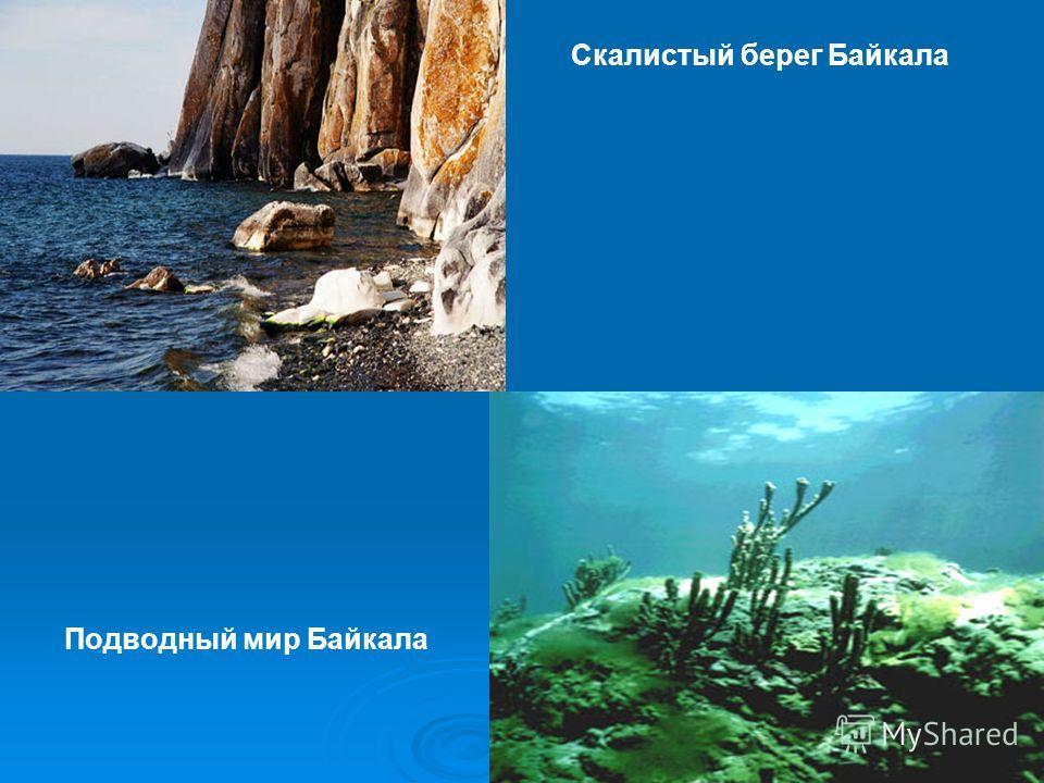 Скалистый берег Байкала Подводный мир Байкала