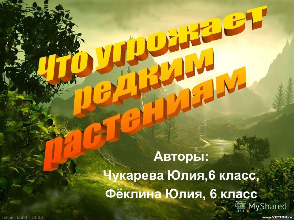 Авторы: Чукарева Юлия,6 класс, Фёклина Юлия, 6 класс