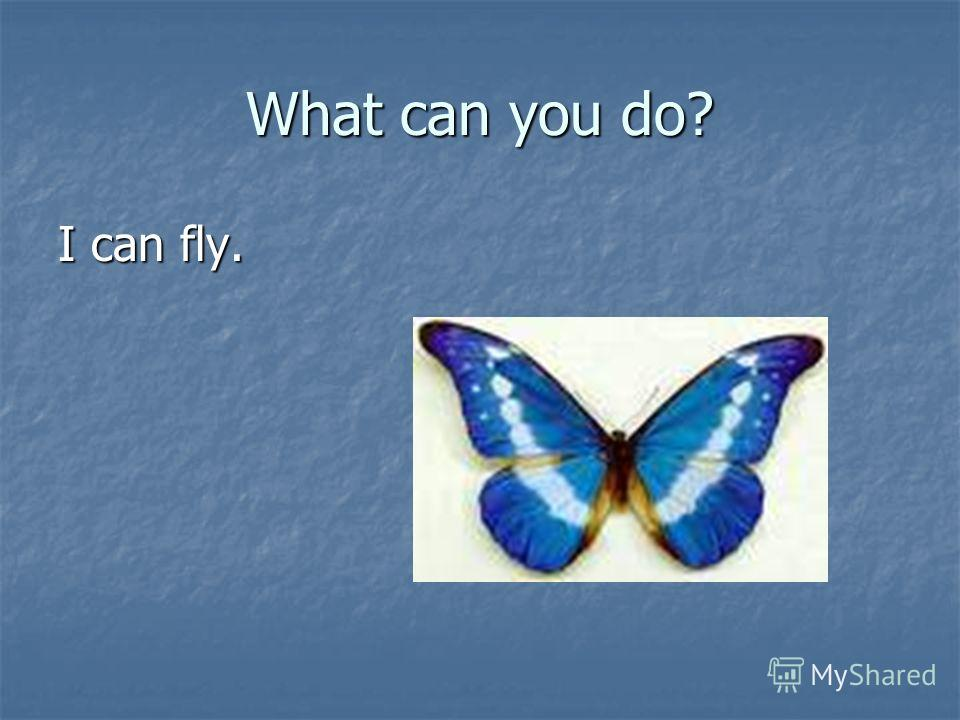 What can you do? I can fly.