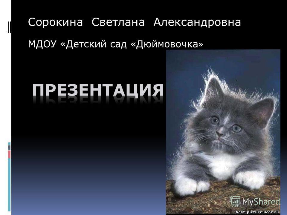 Сорокина Светлана Александровна МДОУ «Детский сад «Дюймовочка »