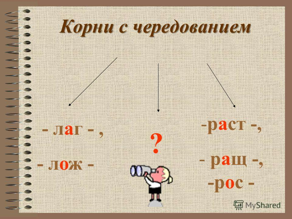 Так как же правильно определить,что написать А или О ?