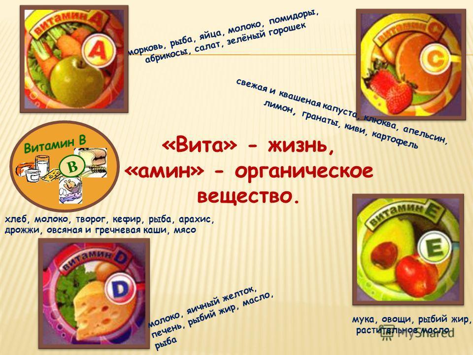 морковь, рыба, яйца, молоко, помидоры, абрикосы, салат, зелёный горошек свежая и квашеная капуста, клюква, апельсин, лимон, гранаты, киви, картофель хлеб, молоко, творог, кефир, рыба, арахис, дрожжи, овсяная и гречневая каши, мясо «Вита» - жизнь, «ам