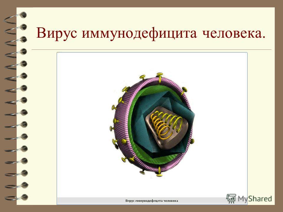 Происхождение вирусов. Вирусы представляют собой автономные генетические структуры, неспособные, однако, развиваться вне клетки. Предполагают, что вирусы и бактериофаги – обособившиеся генетические элементы клеток, которые эволюционировали вместе с к