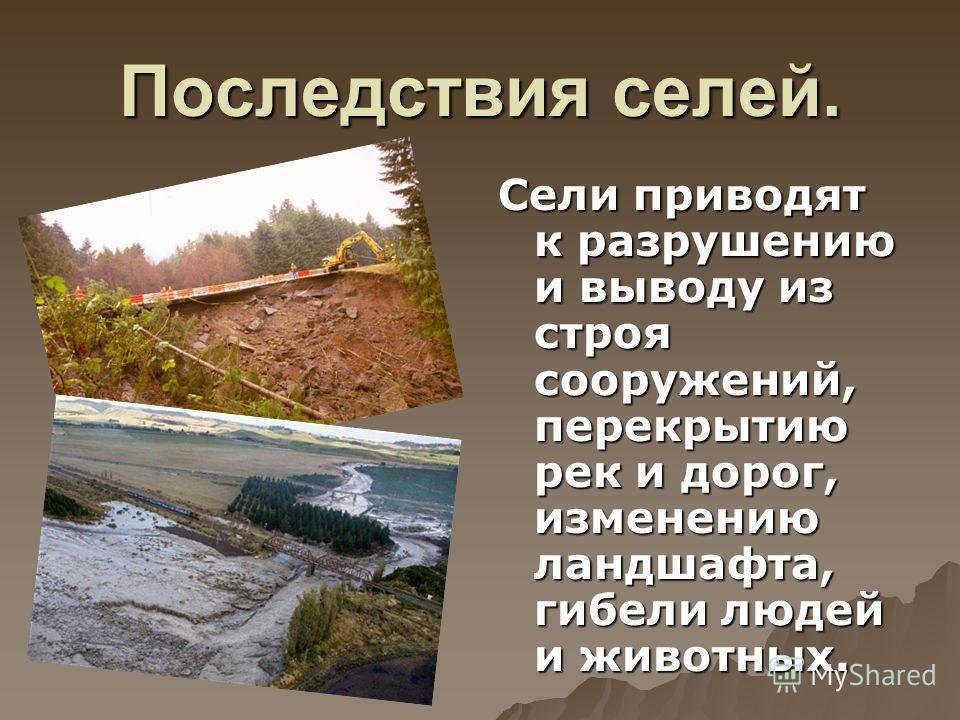 Последствия селей. Сели приводят к разрушению и выводу из строя сооружений, перекрытию рек и дорог, изменению ландшафта, гибели людей и животных.