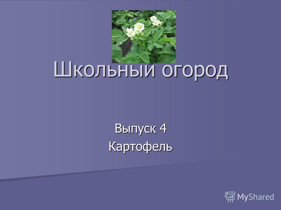 Школьный огород Выпуск 4 Картофель