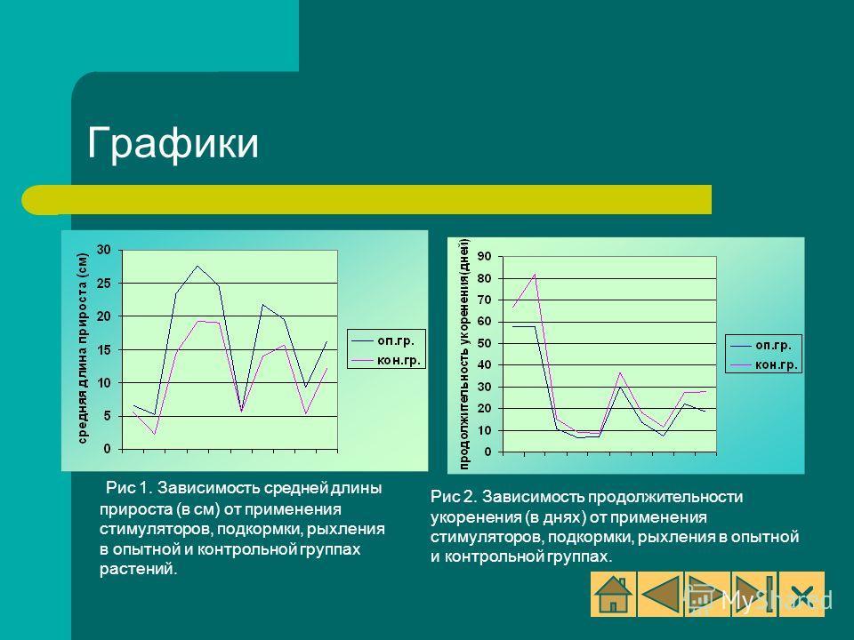 Рис 1. Зависимость средней длины прироста (в см) от применения стимуляторов, подкормки, рыхления в опытной и контрольной группах растений. Рис 2. Зависимость продолжительности укоренения (в днях) от применения стимуляторов, подкормки, рыхления в опыт