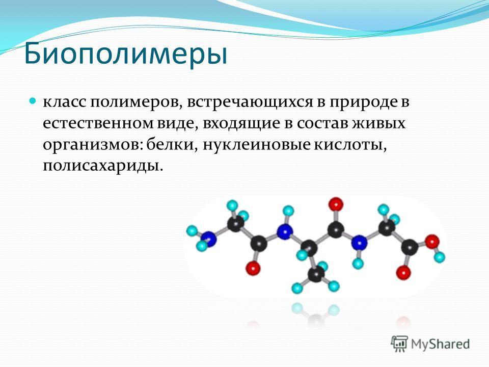 Биополимеры класс полимеров, встречающихся в природе в естественном виде, входящие в состав живых организмов: белки, нуклеиновые кислоты, полисахариды.