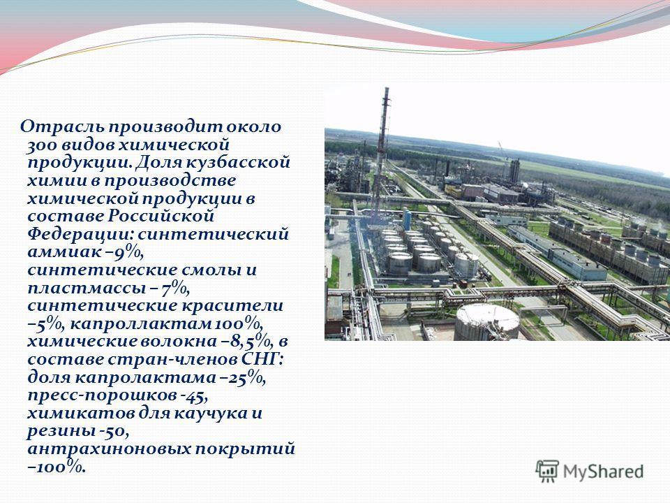 Отрасль производит около 300 видов химической продукции. Доля кузбасской химии в производстве химической продукции в составе Российской Федерации: синтетический аммиак –9%, синтетические смолы и пластмассы – 7%, синтетические красители –5%, капроллак