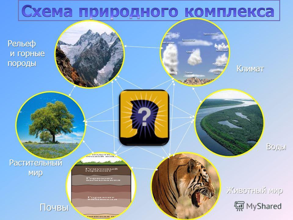 Климат Воды Животный мир Почвы Растительный мир Рельеф и горные породы