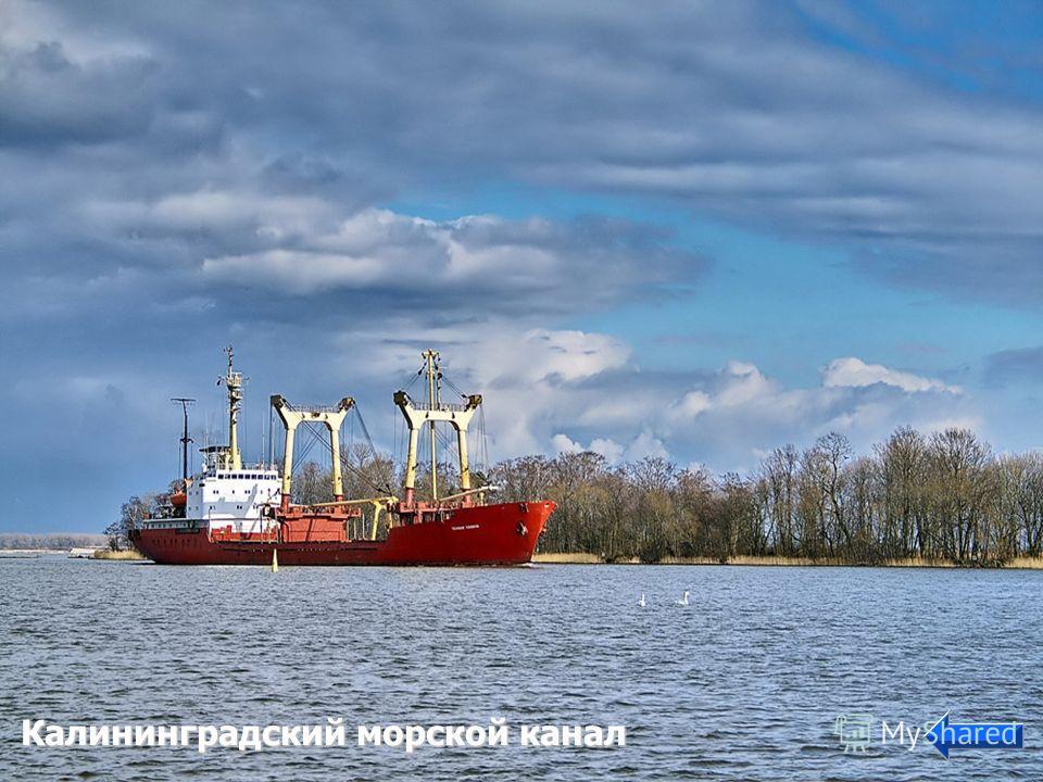Водные антропогенные ландшафты Калининградский морской канал