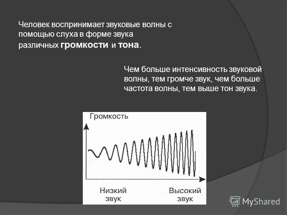 Человек воспринимает звуковые волны с помощью слуха в форме звука различных громкости и тона. Чем больше интенсивность звуковой волны, тем громче звук, чем больше частота волны, тем выше тон звука.