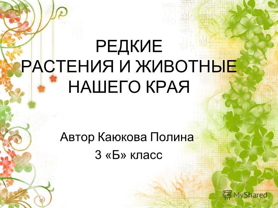 РЕДКИЕ РАСТЕНИЯ И ЖИВОТНЫЕ НАШЕГО КРАЯ Автор Каюкова Полина 3 «Б» класс
