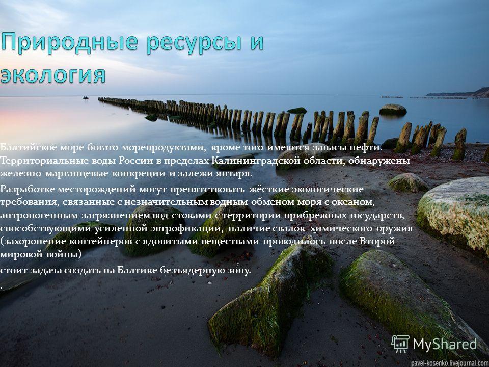 Балтийское море богато морепродуктами, кроме того имеются запасы нефти. Территориальные воды России в пределах Калининградской области, обнаружены железно-марганцевые конкреции и залежи янтаря. Разработке месторождений могут препятствовать жёсткие эк