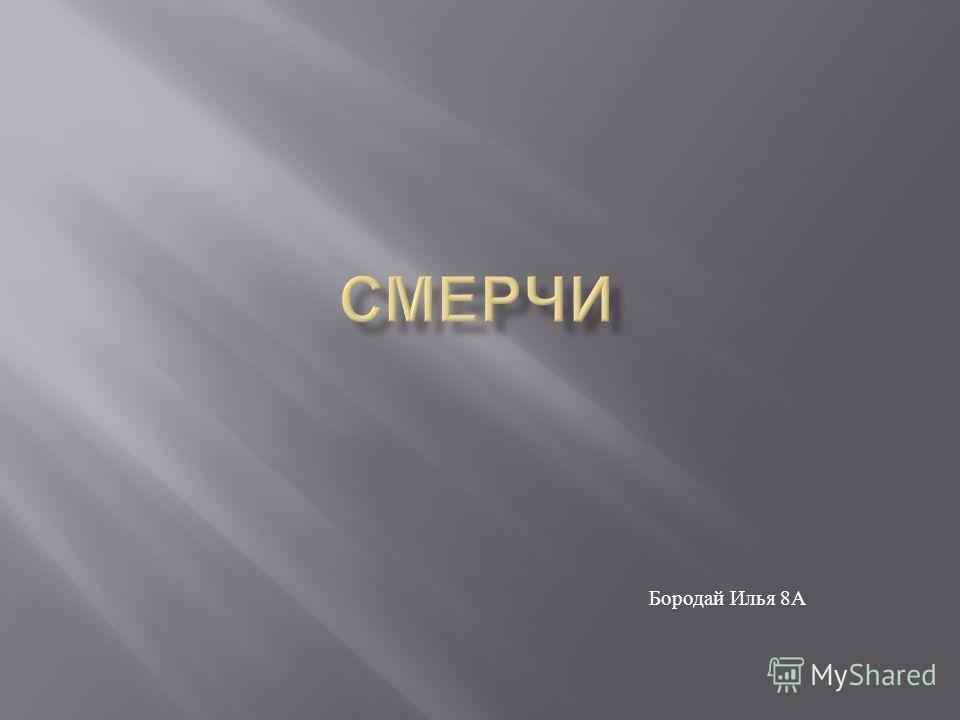 Бородай Илья 8 А