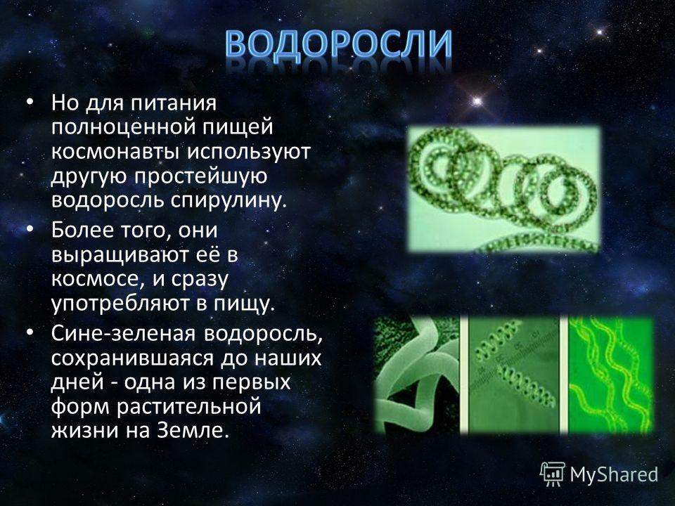 Но для питания полноценной пищей космонавты используют другую простейшую водоросль спирулину. Более того, они выращивают её в космосе, и сразу употребляют в пищу. Сине-зеленая водоросль, сохранившаяся до наших дней - одна из первых форм растительной