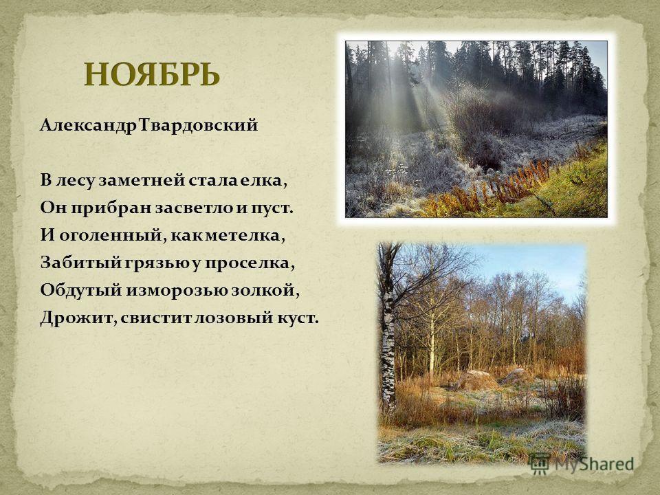 Александр Твардовский В лесу заметней стала елка, Он прибран засветло и пуст. И оголенный, как метелка, Забитый грязью у проселка, Обдутый изморозью золкой, Дрожит, свистит лозовый куст.