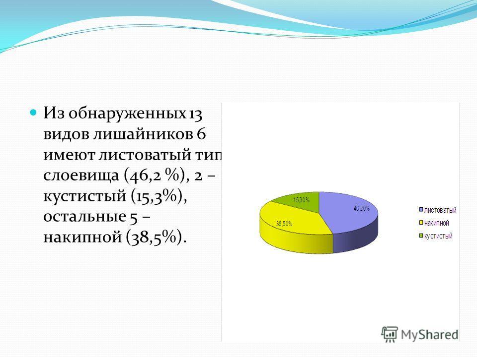 Из обнаруженных 13 видов лишайников 6 имеют листоватый тип слоевища (46,2 %), 2 – кустистый (15,3%), остальные 5 – накипной (38,5%).