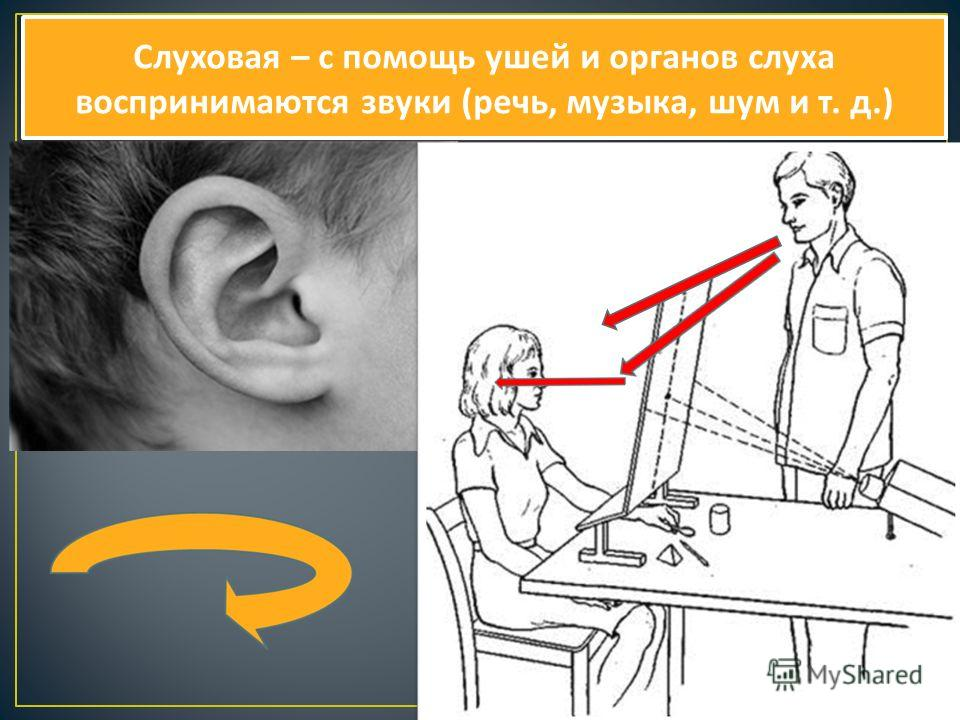 Слуховая – с помощь ушей и органов слуха воспринимаются звуки ( речь, музыка, шум и т. д.)