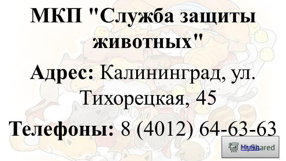МКП Служба защиты животных Адрес: Калининград, ул. Тихорецкая, 45 Телефоны: 8 (4012) 64-63-63 Назад