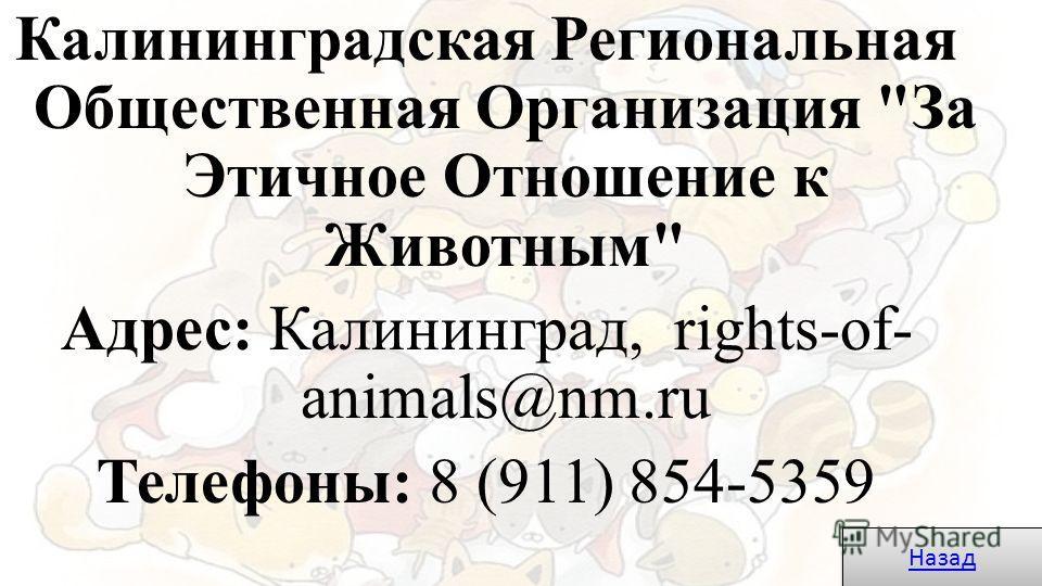 Калининградская Региональная Общественная Организация За Этичное Отношение к Животным Адрес: Калининград, rights-of- animals@nm.ru Телефоны: 8 (911) 854-5359 Назад