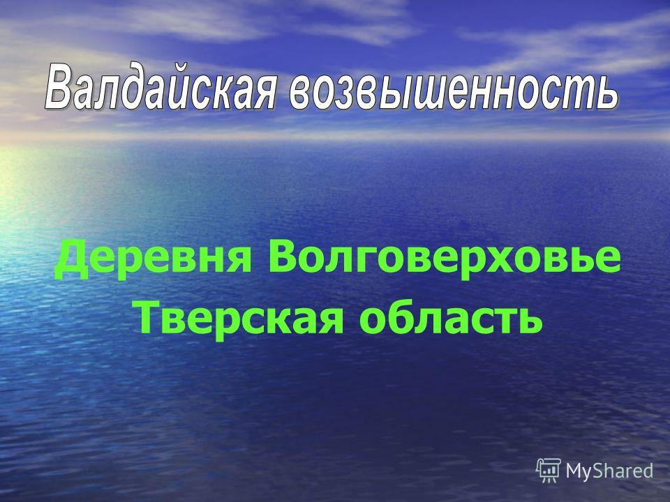 Деревня Волговерховье Тверская область