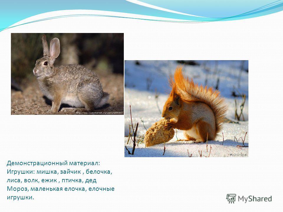 Демонстрационный материал: Игрушки: мишка, зайчик, белочка, лиса, волк, ежик, птичка, дед Мороз, маленькая елочка, елочные игрушки.