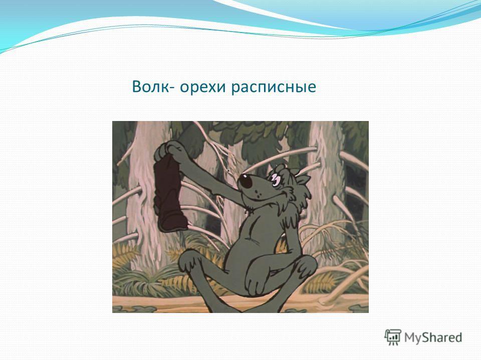 Волк- орехи расписные