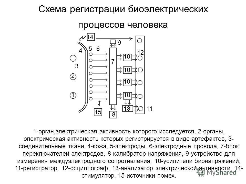 1 2 3 4 56 7 15 10 14 13 8 9 12 11 10 1-орган,электрическая активность которого исследуется, 2-органы, электрическая активность которых регистрируется в виде артефактов, 3- соединительные ткани, 4-кожа, 5-электроды, 6-электродные провода, 7-блок пере
