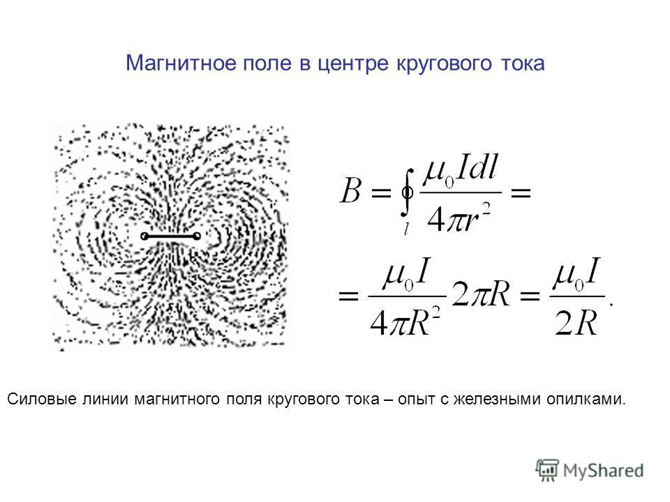 Магнитное поле в центре кругового тока Силовые линии магнитного поля кругового тока – опыт с железными опилками.