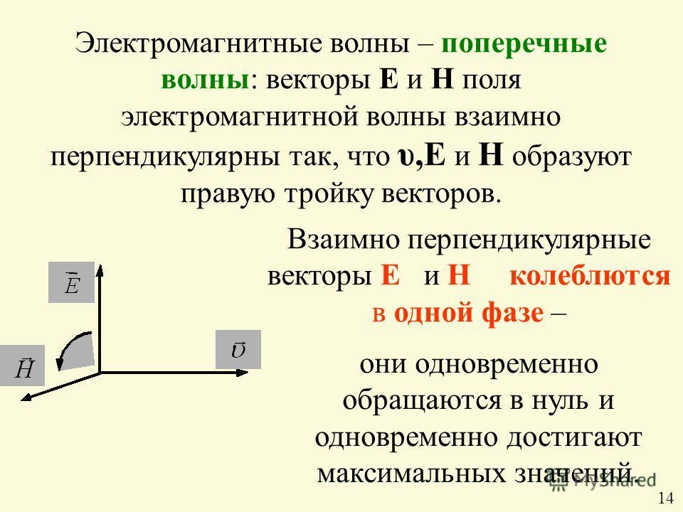 Электромагнитные волны – поперечные волны: векторы Е и Н поля электромагнитной волны взаимно перпендикулярны так, что υ,Е и Н образуют правую тройку векторов. Взаимно перпендикулярные векторы Е и Н колеблются в одной фазе – они одновременно обращаютс