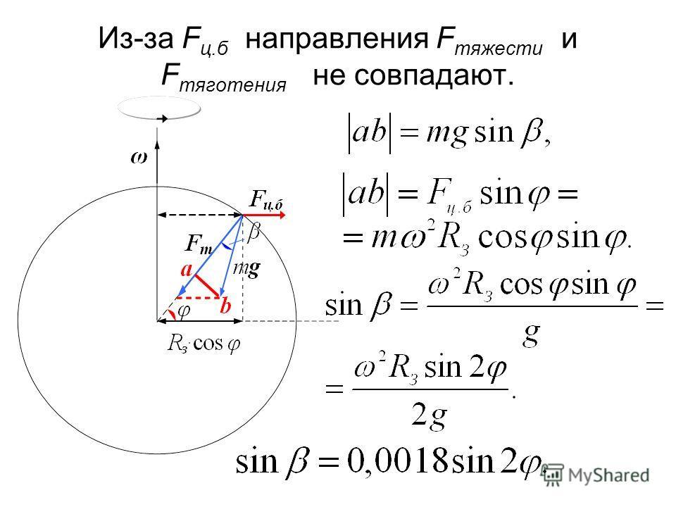 Из-за F ц.б направления F тяжести и F тяготения не совпадают.
