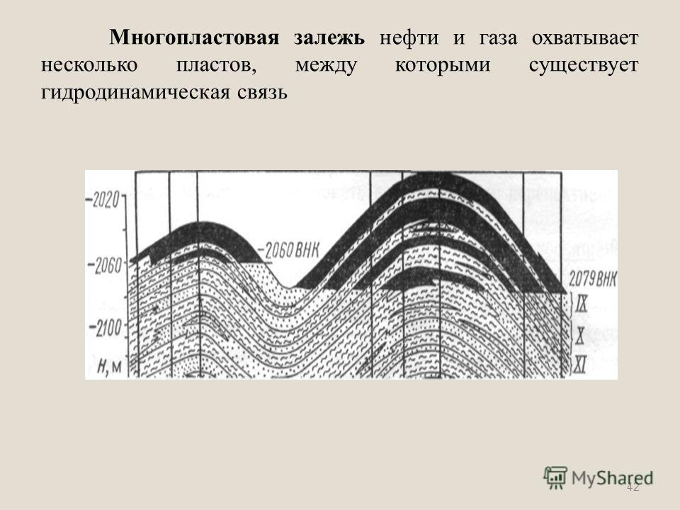 Многопластовая залежь нефти и газа охватывает несколько пластов, между которыми существует гидродинамическая связь 42