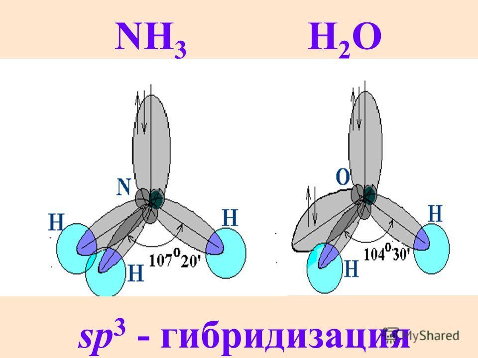NH 3 H 2 O sp 3 - гибридизация