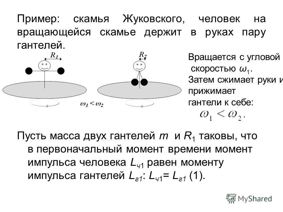 Пример: скамья Жуковского, человек на вращающейся скамье держит в руках пару гантелей. Пусть масса двух гантелей m и R 1 таковы, что в первоначальный момент времени момент импульса человека L ч1 равен моменту импульса гантелей L г1 : L ч1 = L г1 (1).