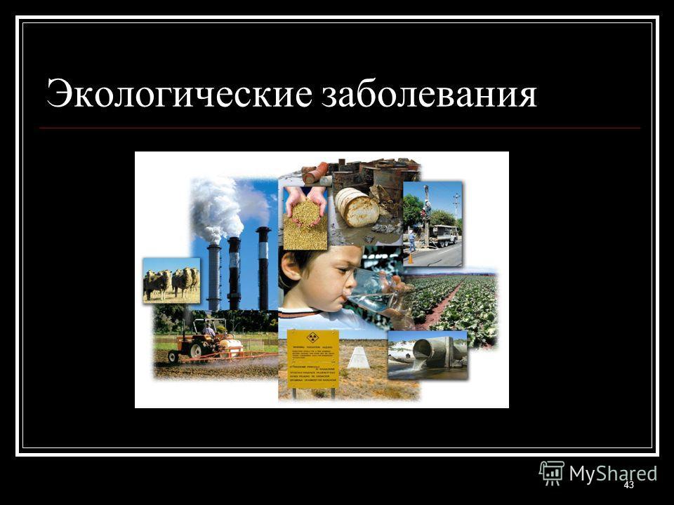 Экологические заболевания 43