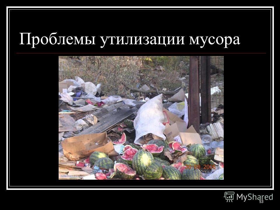 Проблемы утилизации мусора 53