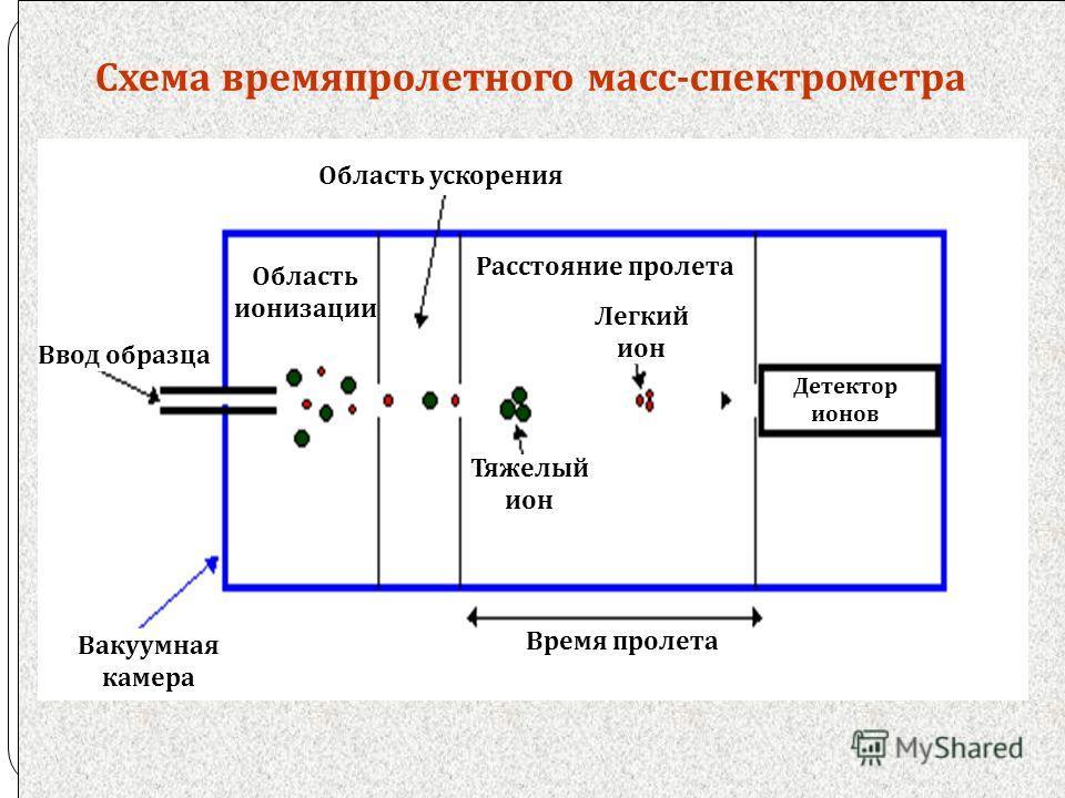 Схема времяпролетного масс - спектрометра Область ускорения Область ионизации Тяжелый ион Легкий ион Расстояние пролета Детектор ионов Ввод образца Время пролета Вакуумная камера