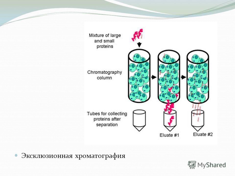 Эксклюзионная хроматография