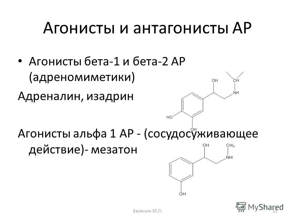 Агонисты и антагонисты АР Агонисты бета-1 и бета-2 АР (адреномиметики) Адреналин, изадрин Агонисты альфа 1 АР - (сосудосуживающее действие)- мезатон 15Белянин М.Л.