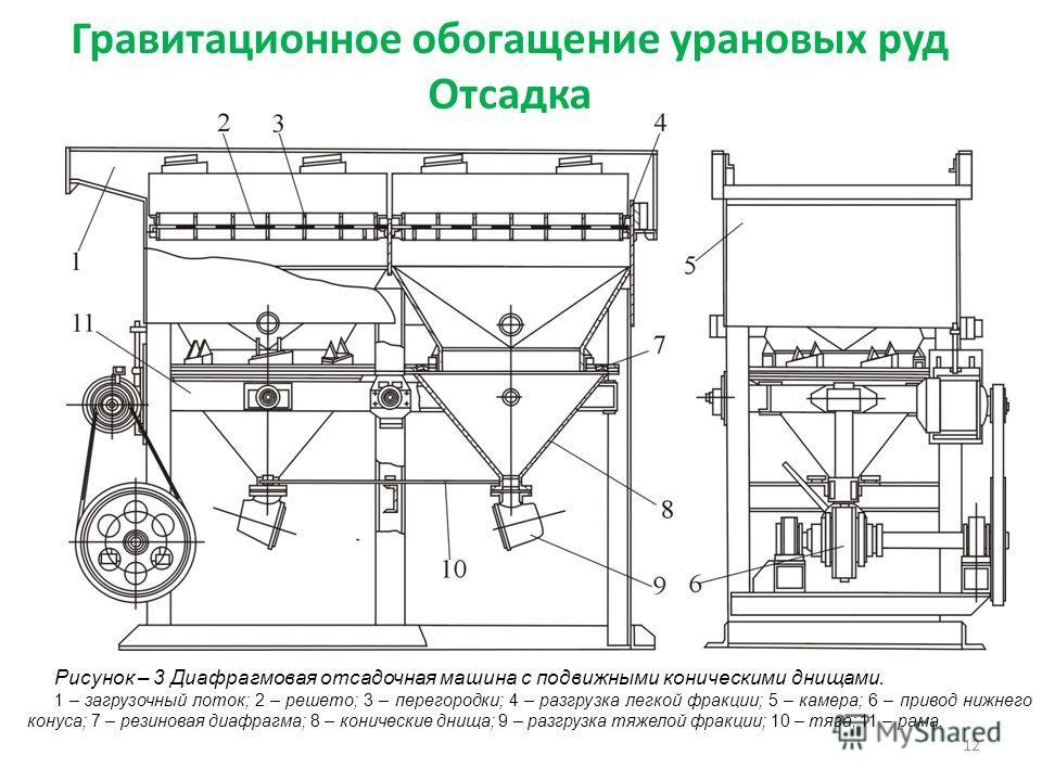 Гравитационное обогащение урановых руд Отсадка 12 Рисунок – 3 Диафрагмовая отсадочная машина с подвижными коническими днищами. 1 – загрузочный лоток; 2 – решето; 3 – перегородки; 4 – разгрузка легкой фракции; 5 – камера; 6 – привод нижнего конуса; 7