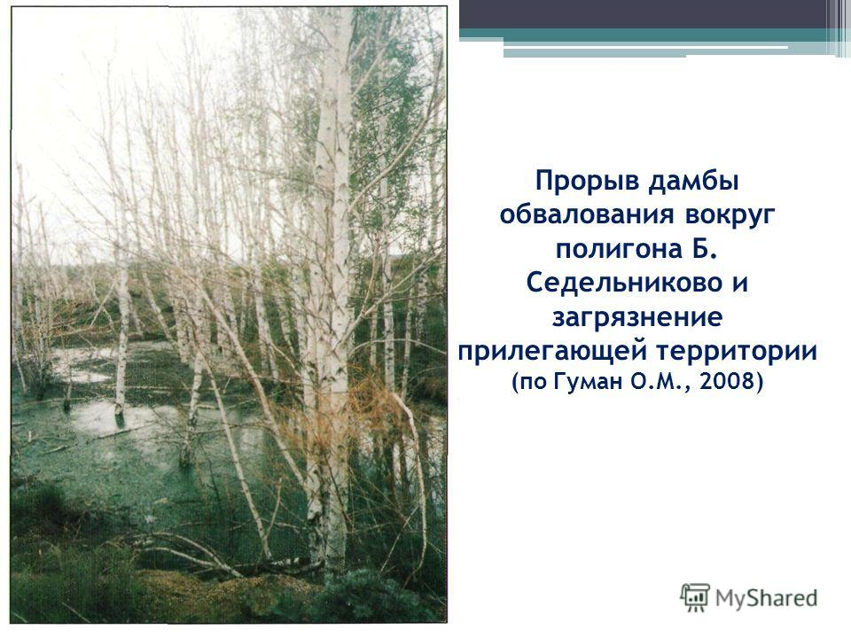 Прорыв дамбы обвалования вокруг полигона Б. Седельниково и загрязнение прилегающей территории (по Гуман О.М., 2008)
