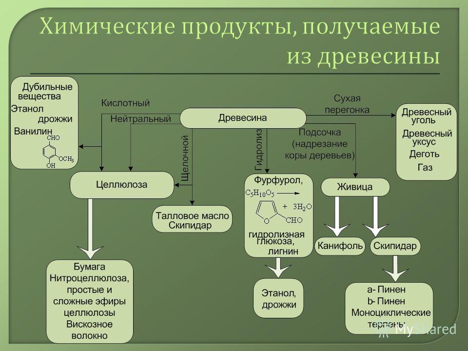Химические продукты, получаемые из древесины