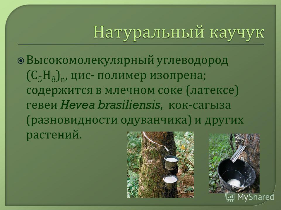 Высокомолекулярный углеводород (C 5 H 8 ) n, цис - полимер изопрена ; содержится в млечном соке ( латексе ) гевеи Hevea brasiliensis, кок - сагыза ( разновидности одуванчика ) и других растений.